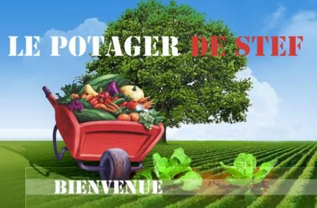 Le potager de Stef, production de légumes et vente sur place à Veyre-Monton