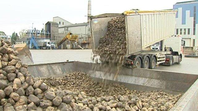 La Région s'engage pour la filière sucrière Bourdon