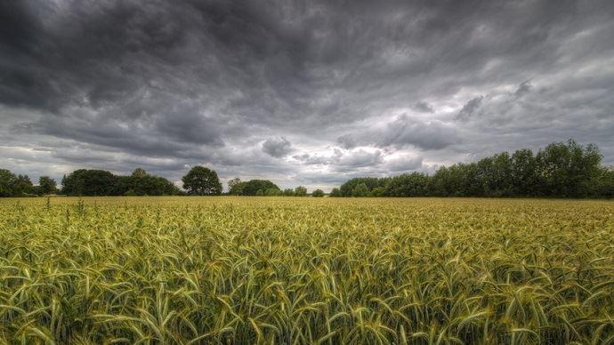 Le rendez-vous de la transition écologique