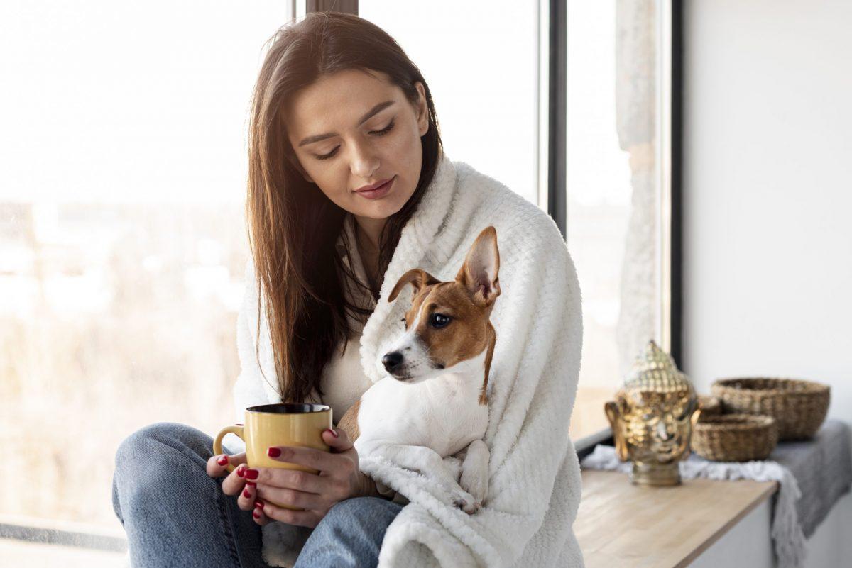Le rôle des animaux domestiques