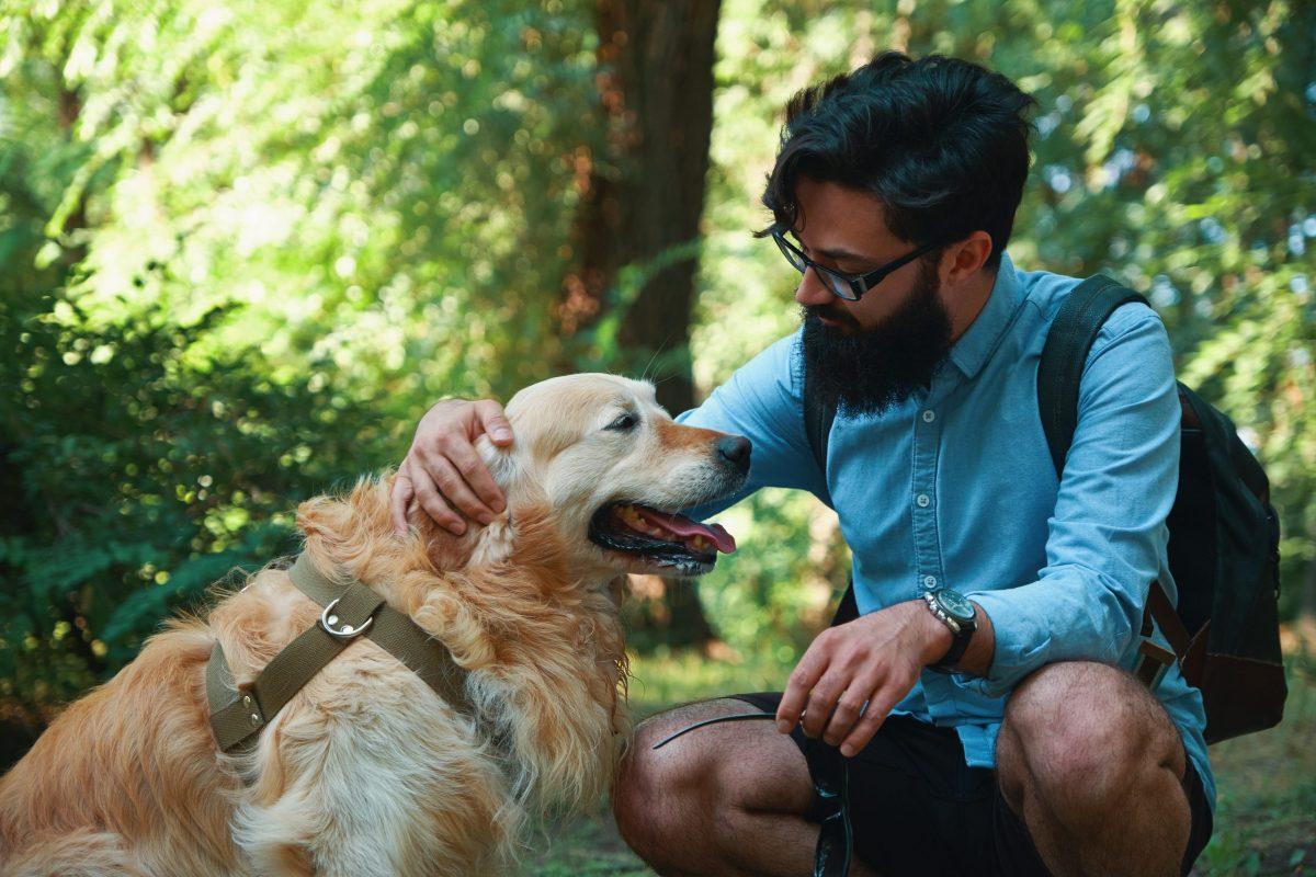 Confinement: Le rôle des animaux domestiques