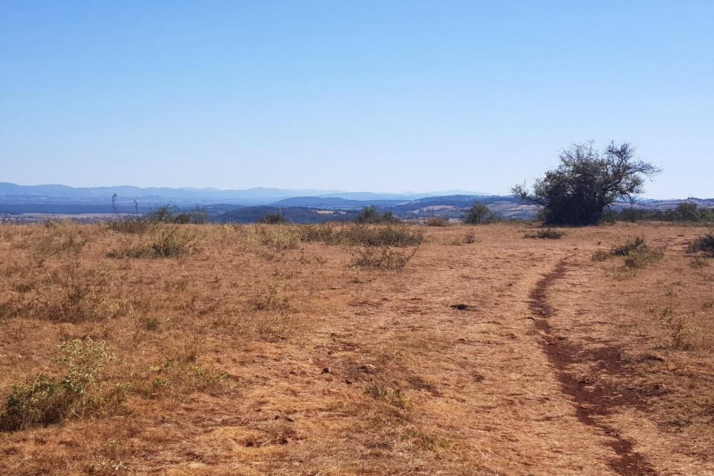 Sécheresse | Le gouvernement prend de nouvelles mesures pour l'agriculture