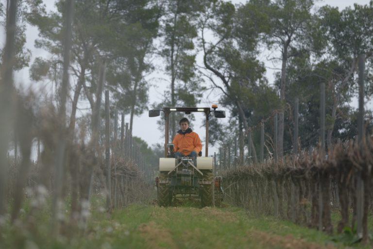 Incubateur Busi | A la découverte de SABI AGRI