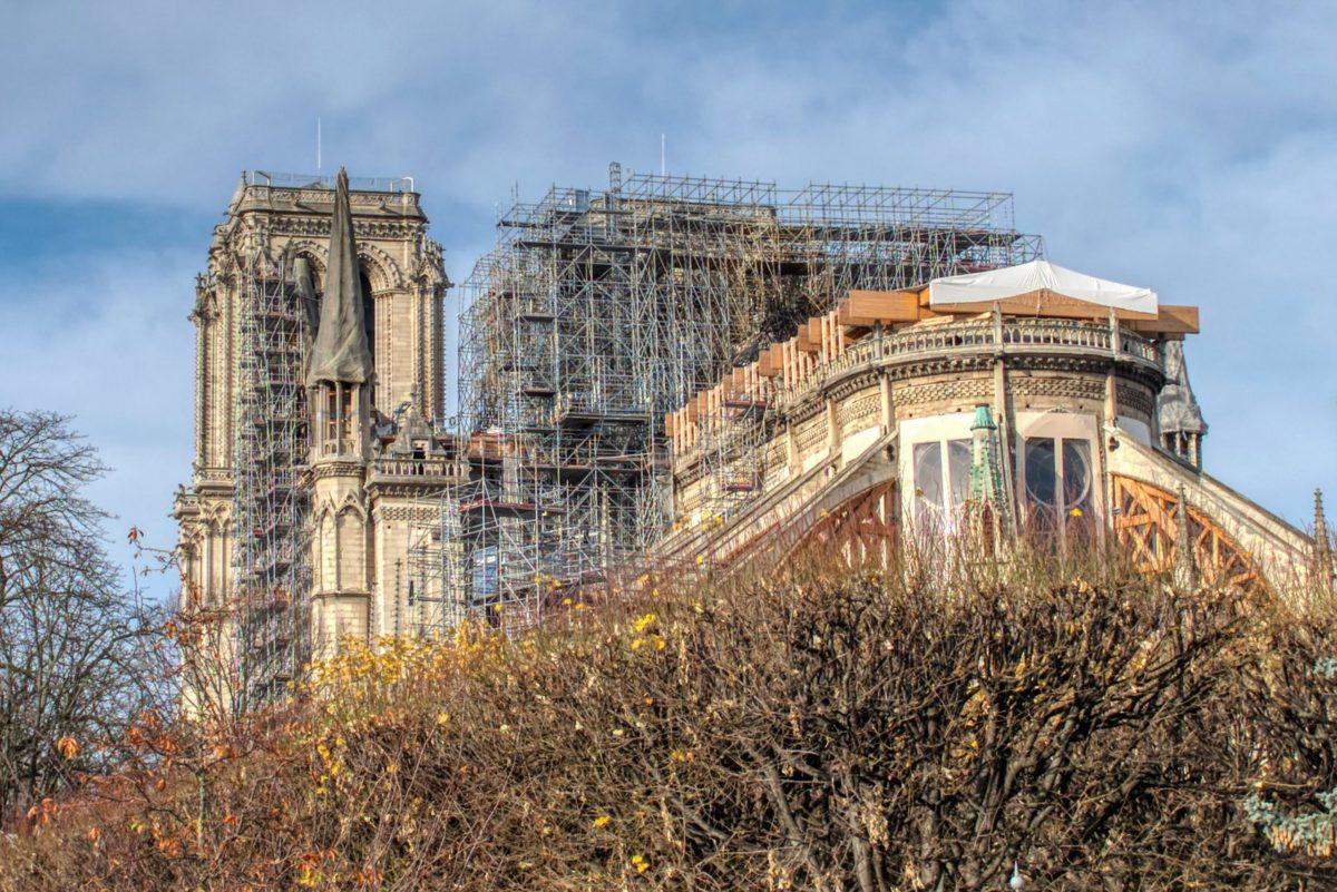 Notre-Dame de Paris | La filière forêt-bois mobilisée