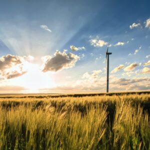 Stratégie climat: Le Crédit Mutuel Arkéa publie ses engagements à horizon 2024