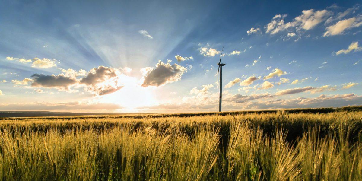 Climat | Le Crédit Mutuel Arkéa publie ses engagements