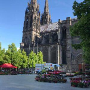 Nature et Jardin |La nature revient au cœur de ville