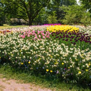 Culture | 5ème édition de Jardins Ouverts en IDF